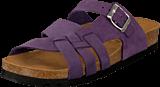 Scholl - Carsol Purple