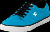 DC Shoes - Kids Nyjah Vulc Tx  Shoe Turquoise/Black