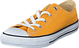 Converse - All Star Seasonal-Ox Solar Orange